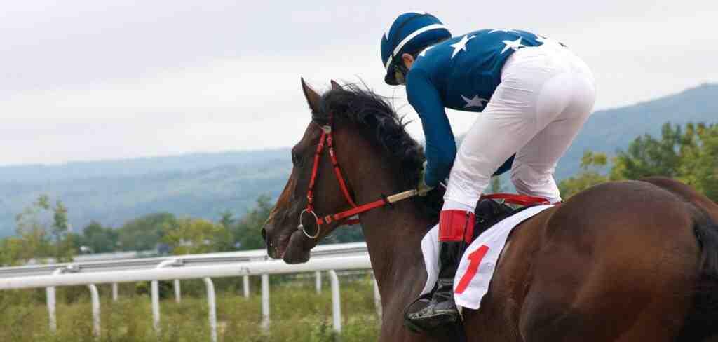 Comment gagner de l'argent aux courses de chevaux ?