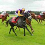 Comment trouver le cheval gagnant d'une course ?